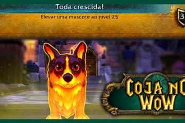 conquista-mascote-batalha-nivelar-maximo-warcraft