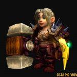 gnomos-lore-wow-guerreira